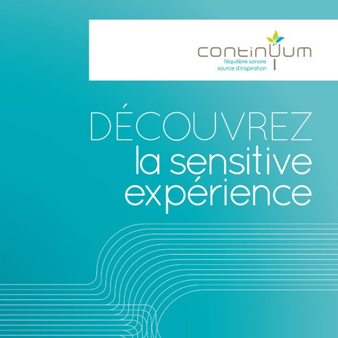 continuum sensitive experience
